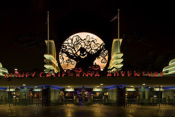 The Best Reasons To Visit Disneyland Around Halloween