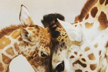 25 Adorable Animal Moms + Babies To Brighten Your Day
