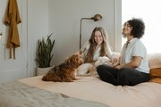5 Ways You Can Improve the Air Quality in Your Family Home