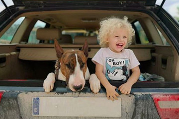 Proof Babies And Dogs Can Be Best Friends