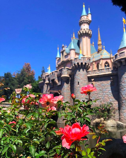 All The 2019 Dates You'll Want To Know To Plan Your Disneyland Trip